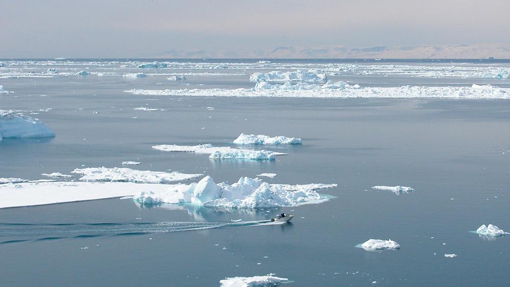Arktinen