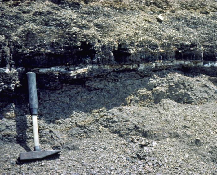 Vaalea viiva on iridiumpitoista savea New Mexicossa. Alapuolella on dinosaurusten ajan eli liitukauden kerroksia, yläpuolella massasukupuuton jälkeisiä kerroksia.